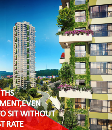 6679b27f89a64 Property Life İstanbul